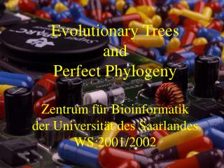 Evolutionary Trees and Perfect Phylogeny Zentrum für Bioinformatik der Universität des Saarlandes