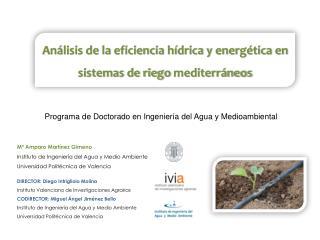 An�lisis de la eficiencia h�drica y energ�tica en sistemas de riego  mediterr�neos
