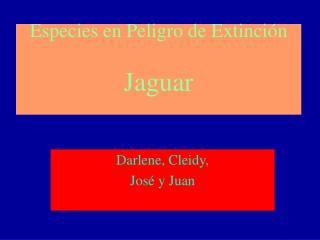 Especies en Peligro de Extinción Jaguar