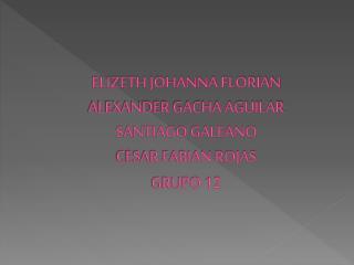 ELIZETH JOHANNA FLORIAN ALEXANDER GACHA AGUILAR SANTIAGO  GALEANO CESAR  FABIAN ROJAS GRUPO 12