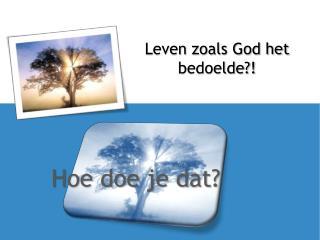 Leven zoals God het bedoelde?!