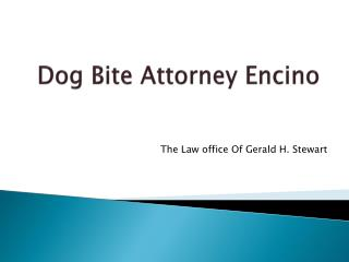 Dog Bite Attorney Encino
