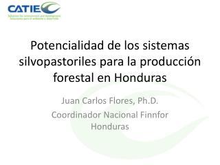 Potencialidad de los sistemas silvopastoriles para la producción forestal en Honduras
