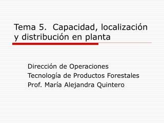 Tema 5.  Capacidad, localizaci�n y distribuci�n en planta