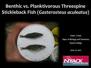 Benthic vs. Planktivorous Threespine Stickleback Fish ( Gasterosteus aculeatus )