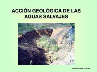ACCI�N GEOL�GICA DE LAS AGUAS SALVAJES
