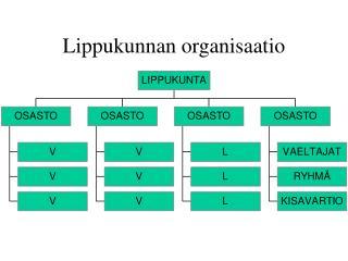 Lippukunnan organisaatio