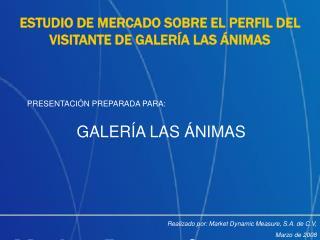 ESTUDIO DE MERCADO SOBRE EL PERFIL DEL VISITANTE DE GALER A LAS  NIMAS