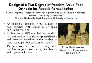 Design of a Two Degree-of-freedom Ankle-Foot Orthosis for Robotic Rehabilitation