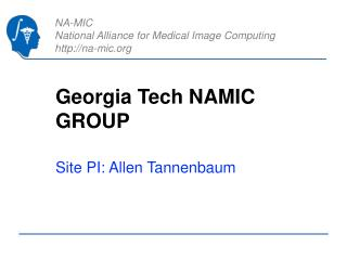 Georgia Tech NAMIC GROUP
