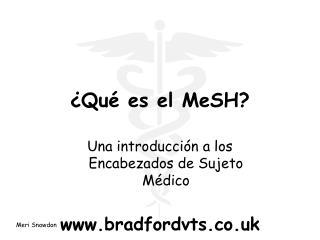 ¿Qué es el MeSH?