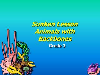 Sunken Lesson Animals with Backbones