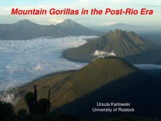 Mountain Gorillas in the Post-Rio Era