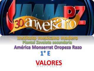 Instituto mexicano madero