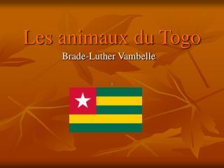 Les animaux du Togo