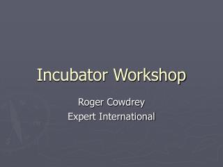 Incubator Workshop