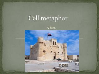 Cell metaphor