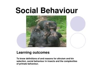Social Behaviour