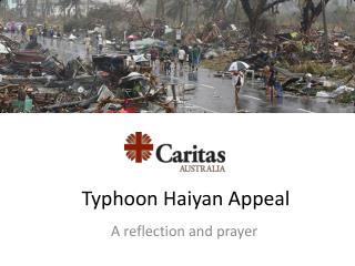 Typhoon Haiyan Appeal