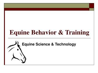 Equine Behavior & Training