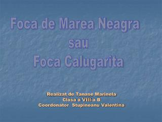 Realizat de Tanase Marinela  Clasa a VIII-a B  Coordonator  Stupineanu Valentina