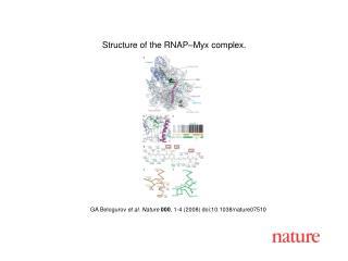 GA B elogurov et al. Nature 000 , 1-4 (2008) doi:10.1038/nature07510