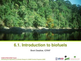 6.1. Introduction to biofuels