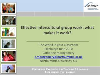 Effective intercultural group work: what makes it work?