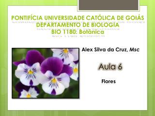 PONTIFÍCIA UNIVERSIDADE CATÓLICA DE GOIÁS DEPARTAMENTO DE BIOLOGIA BIO 1180: Botânica