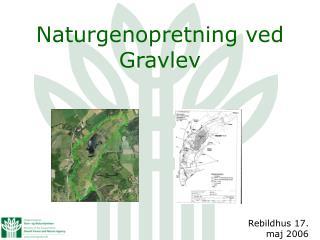 Naturgenopretning ved Gravlev