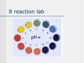 8 reaction lab
