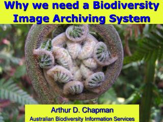 Why we need a Biodiversity Image Archiving System