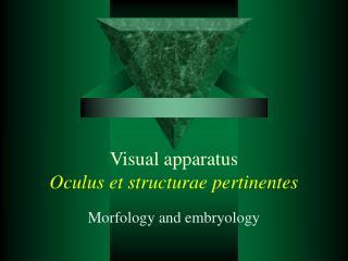 Visual apparatus Oculus et structurae pertinentes