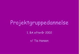 Projektgruppedannelse