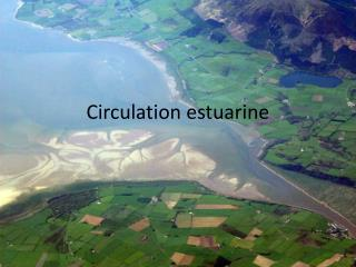 Circulation estuarine