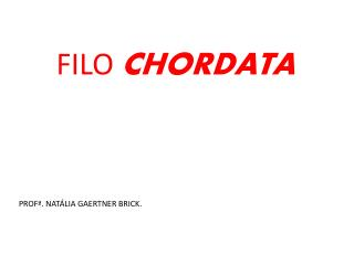 FILO  CHORDATA