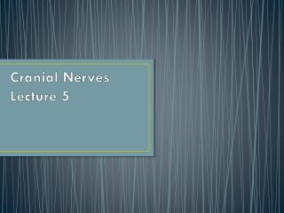 Cranial Nerves Lecture 5