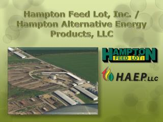Hampton Feed Lot, Inc. /  Hampton  Alternative Energy  Products , LLC
