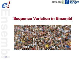 Sequence Variation in Ensembl