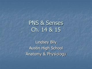 PNS & Senses Ch. 14 & 15