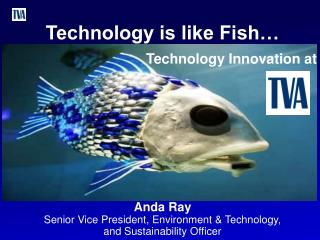 Technology is like Fish…                                    Technology Innovation at