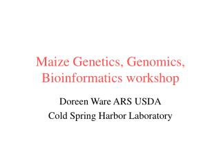 Maize Genetics, Genomics, Bioinformatics workshop