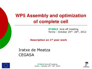 WP5  Assembly and optimization of complete cell