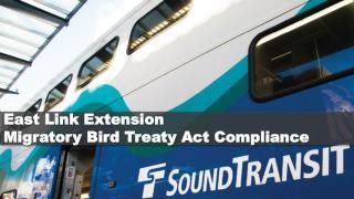 East Link Extension  Migratory Bird Treaty Act Compliance