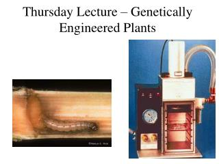 Thursday Lecture   Genetically Engineered Plants