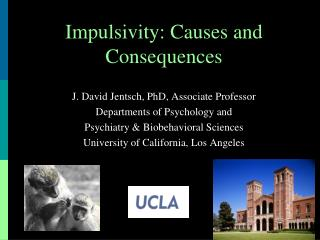 Impulsivity: Causes and Consequences