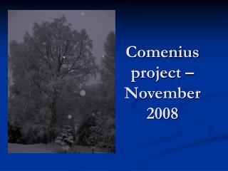 Comenius project � November 2008