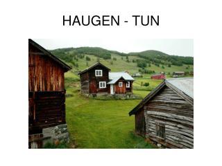 HAUGEN - TUN