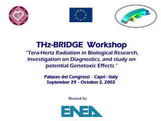 THz-BRIDGE  Workshop