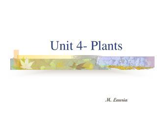 Unit 4- Plants